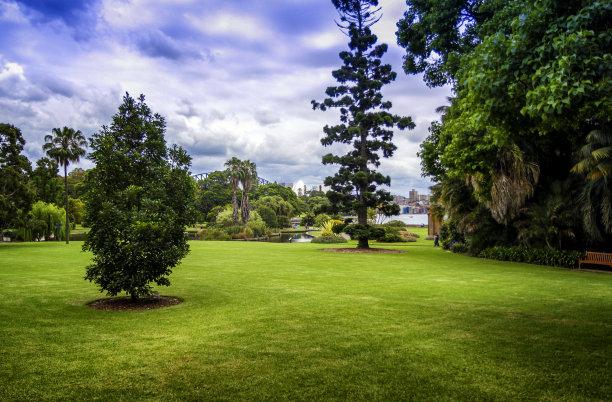 植物园,澳大利亚,悉尼