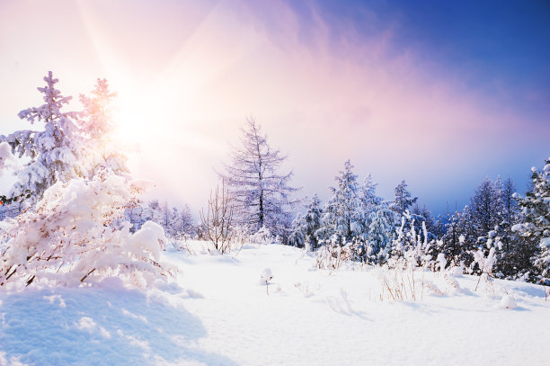 阳光下的雪景