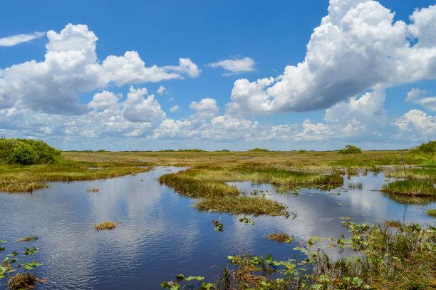 湿地沼泽仅天空