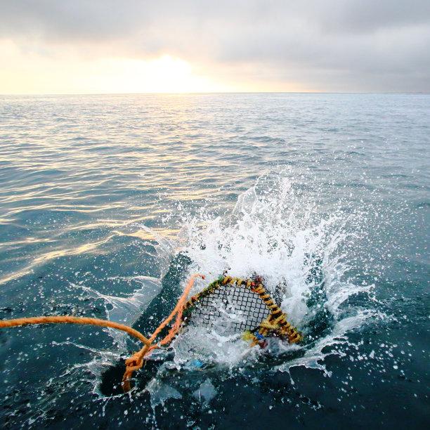 正在捕捞的渔网