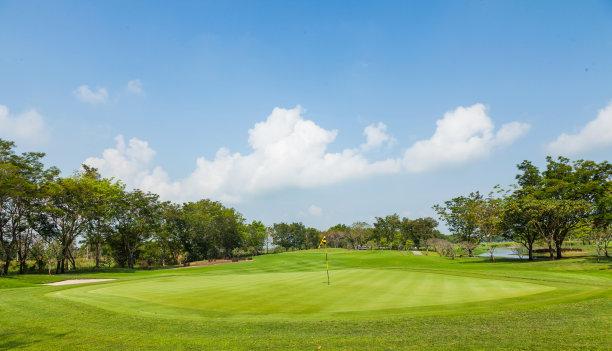 高尔夫球运动,绿色,自然