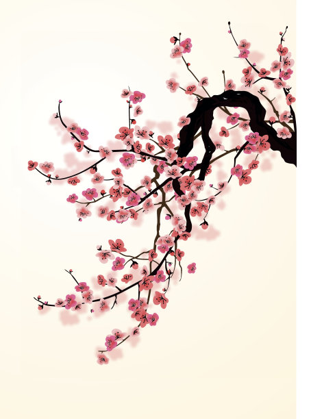 樱之花樱花樱桃