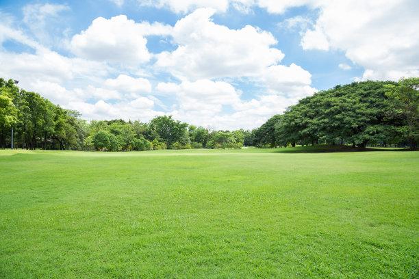 户外空旷草坪