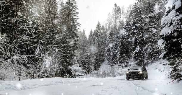 冬天汽车森林