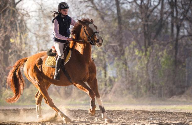 骑在马背上的女孩