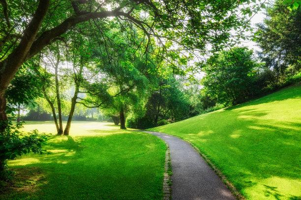 春天,格林公园,公园