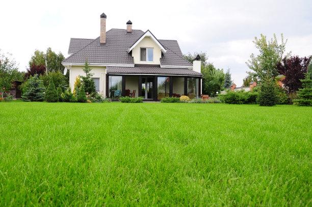 房屋外的草坪