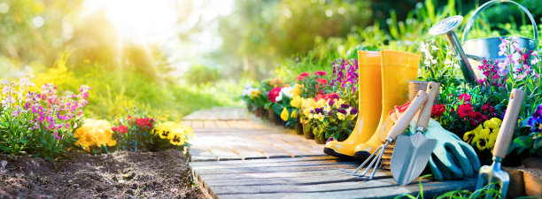 园艺设备用品图片
