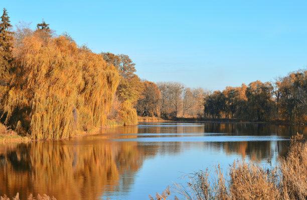 地形,秋天,色彩鲜艳