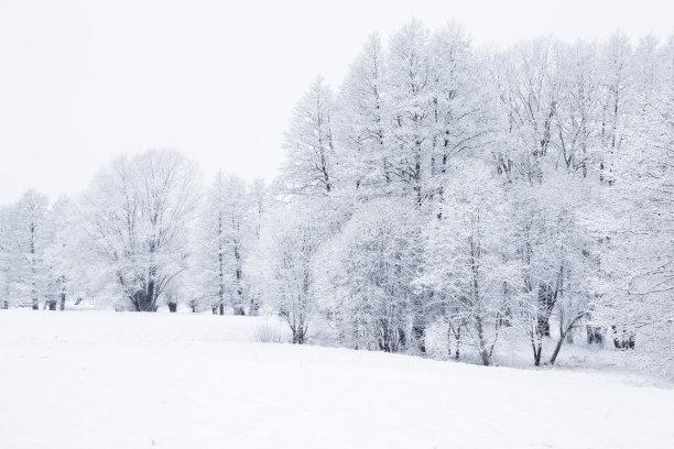 冬天自然美白昼