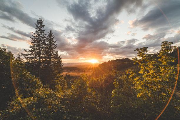 自然美森林山谷