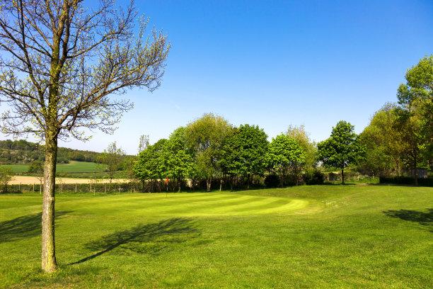 公园,高尔夫球运动,自然美