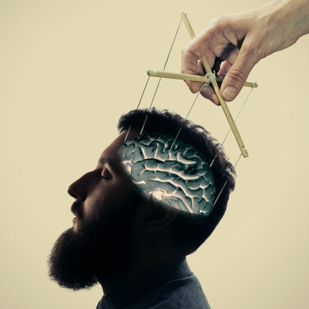 脑部领导能力智慧