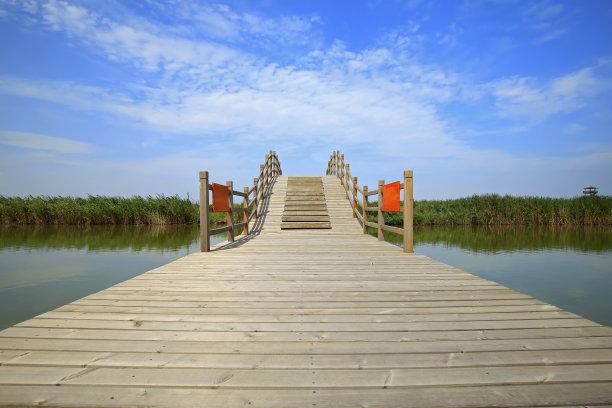 湿地,地形,沼泽地国家公园