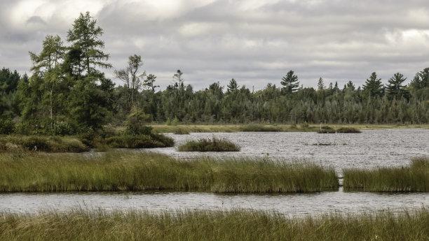 玛德琳娜岛湿地威斯康星