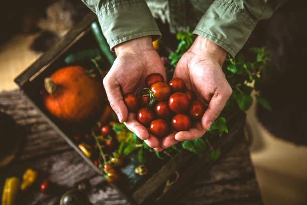 蔬菜有机食品图片