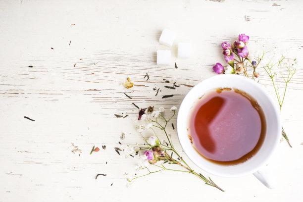 茶树茶叶茶杯
