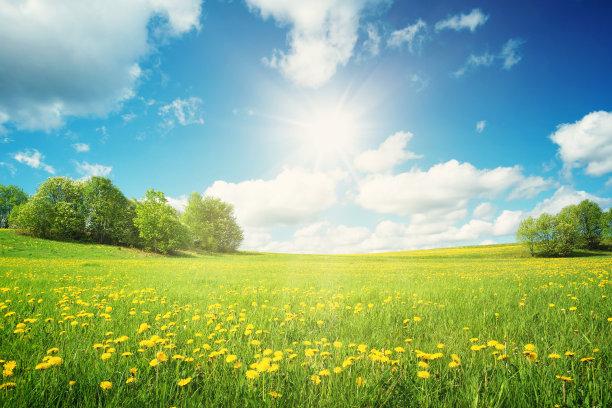 草地和天空