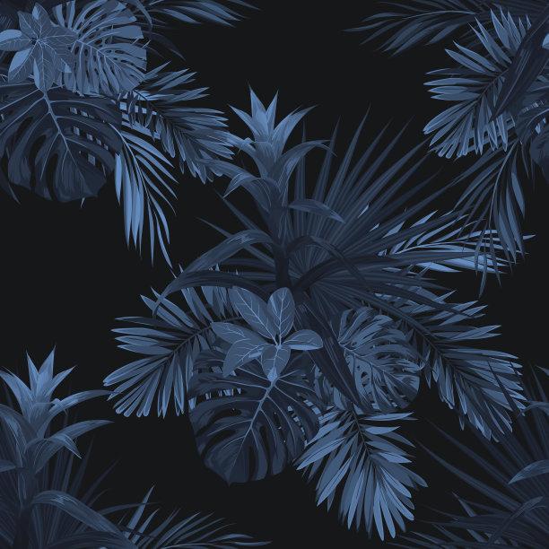 热带植物图案热带气候矢量