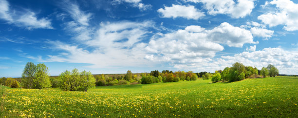 田地和天空
