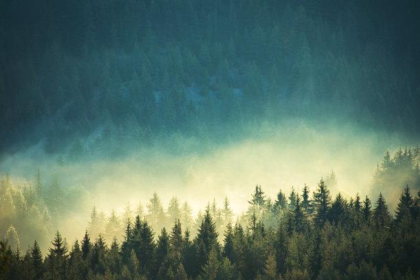 雾山脉看风景