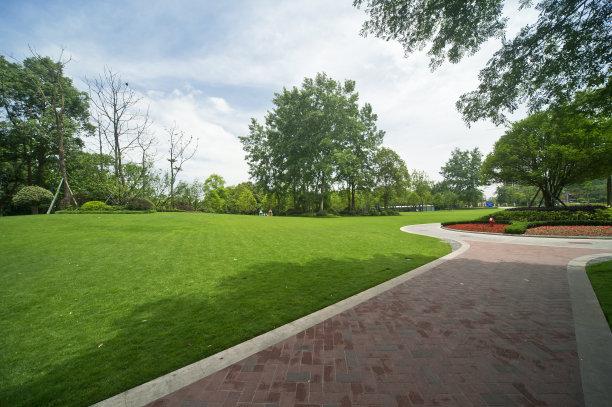 草坪,绿色,空中走廊