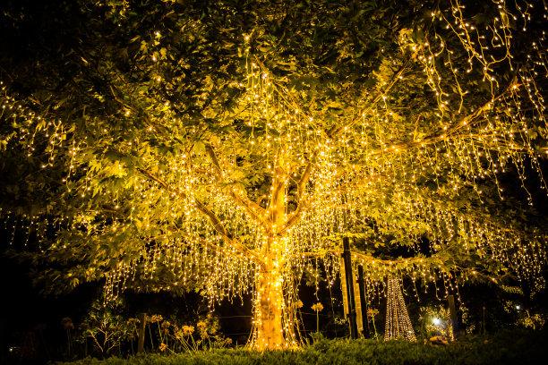 圣诞树圣诞小彩灯庭院