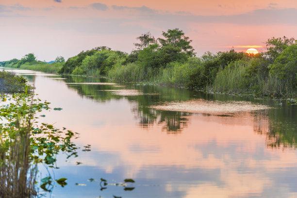 湿地运河佛罗里达