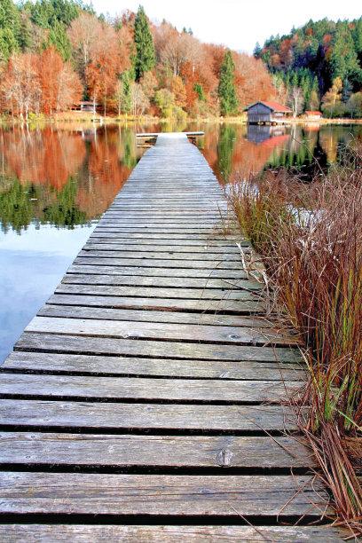 自然,垂直画幅,水