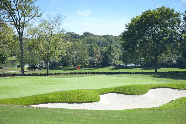 高尔夫球运动,绿色,乡村俱乐部