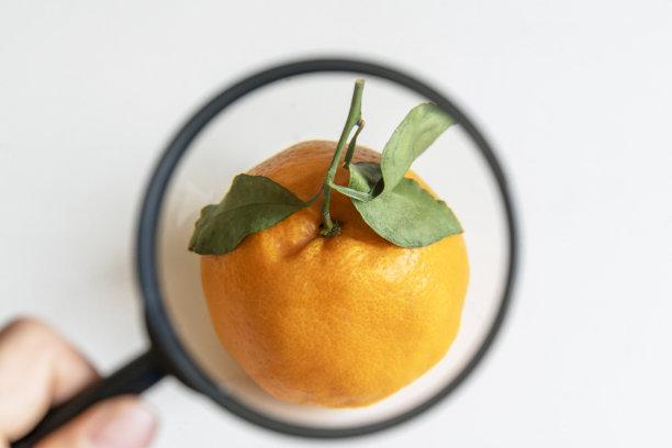 放大镜观察橙子