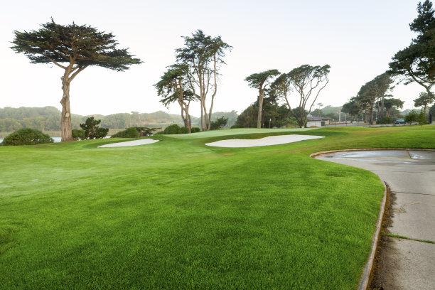 高尔夫球运动,旧金山,留白