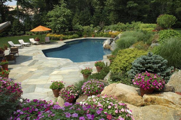 游泳池园林图片