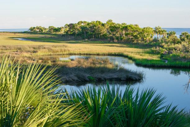 湿地圣马克野生动物保护区海岸地形