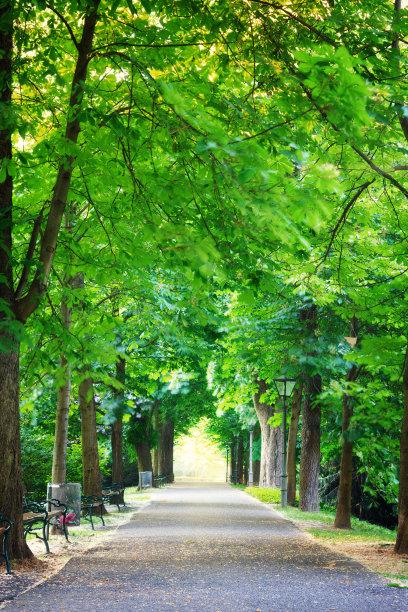 公园城市格拉茨