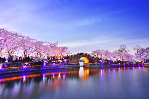 樱花河岸风光