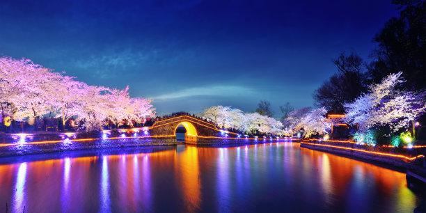 樱桃树枝繁叶茂渔猎开放季节