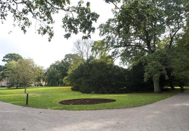 派克大街,花园路,公园