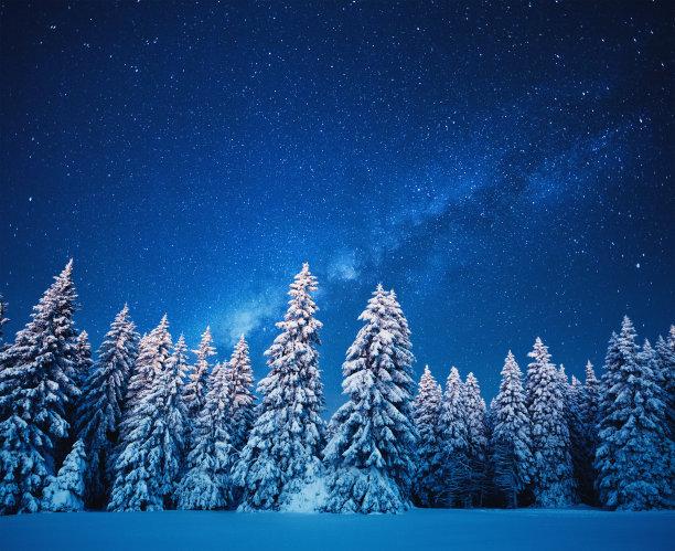 星星冬天森林