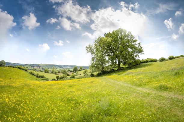 夏天丘陵起伏地形自然美