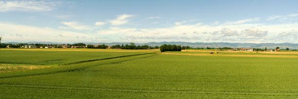 法国农业图片