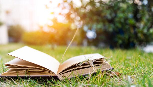 户外草坪上的书