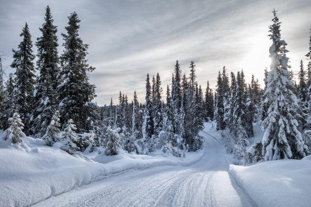 一月挪威滑的