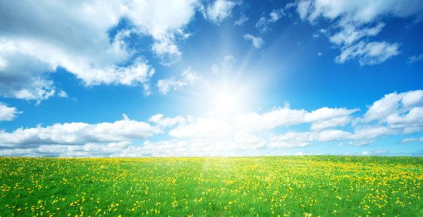 天空下的田地