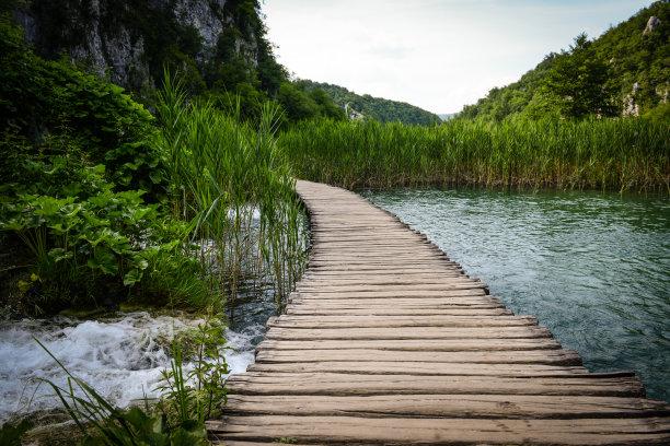 小路,木制,徒步旅行