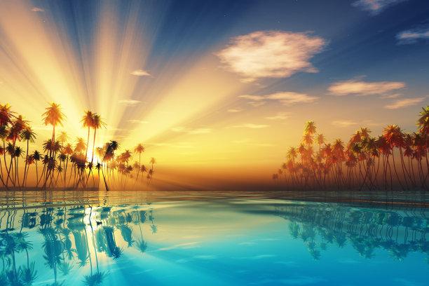 里面阳光光束椰子树