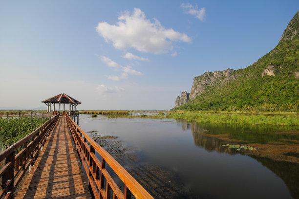 木制,桥,山景城