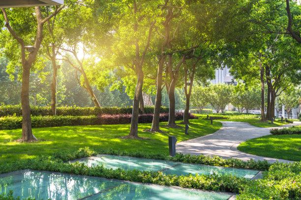 公园自然美景