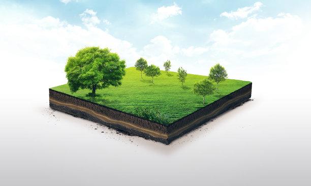 立体效果草地