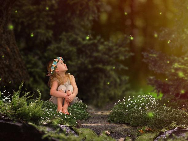 萤火虫仙女森林